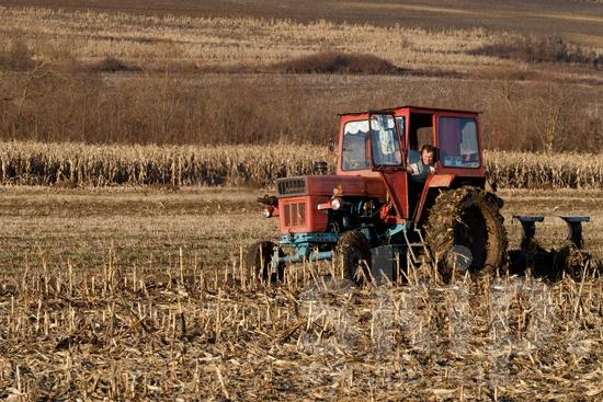 Agriculture;COUNTRY;Europa;Europe;L\'Europe;Man;PEOPLE;Romania;Romanian;Roumain;Roumaine;Rural;Tractor;Transportation;agricultor;agricultora;agricultura;hombre;homem;homme;romena;romeno;rumana;rumano;transporte;Европа;ルーマニア人;交通工具;交通手段;欧洲;田舎;男人;男性;羅馬尼亞人;農業;郊區;유럽