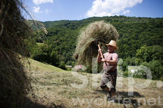 Europe;Farming;Man;Other Keywords;People;Romania;Romanian;Rural;agriculture;places
