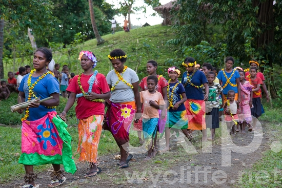 Arts;Celebration;Ceremony;Child;Children;Community;Cross-Culture;Dance;Dancer;Dancers;Dancing;Espiritu Santo;Feast;Female;Females;Girl;Girls;Joy;Kids;Melanesian;Men;Music;Pacific;Pacific Islands;People;Santo;Vanuatu;Village;White People;Woman;Women