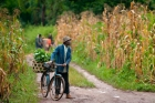 African;BAMESSO;Bicycle;Camero