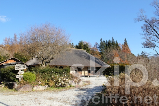 Thatch roof;blue sky;traditional house;trees;autumn;Japanese house;藁葺き屋根;ワラブキ;青空;伝統的な家;紅葉の季節