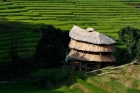 Agriculture;Asia;Asien;Buildin