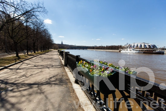 Moscow;Moscow River;Russia;water